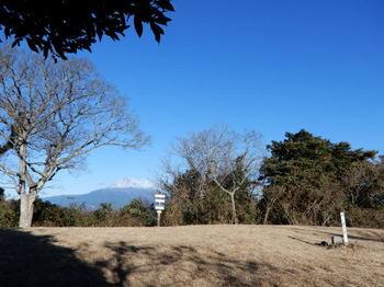DSCN4689.jpg